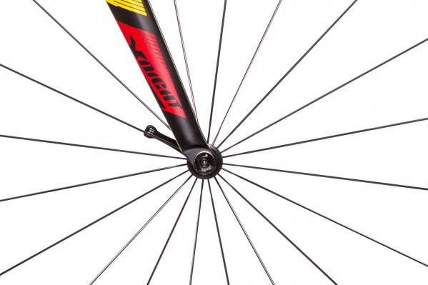 DT Swiss 240 S hub on the front wheel...